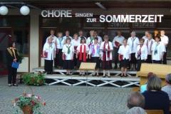 choere_singen_zur_sommerzeit-6