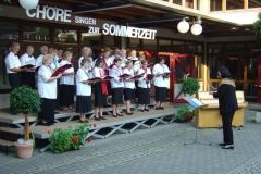 choere_singen_zur_sommerzeit-7