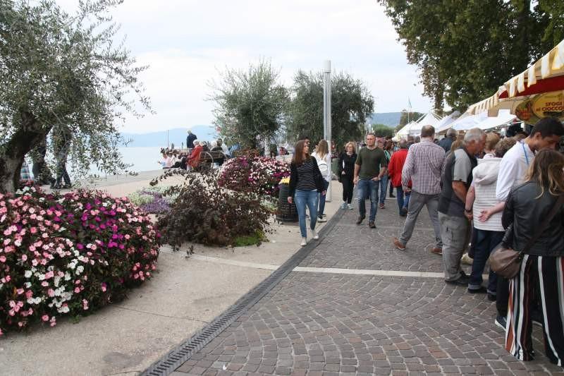 20181005_Italienfahrt_Barbara Kugelmann_IMG_4306.